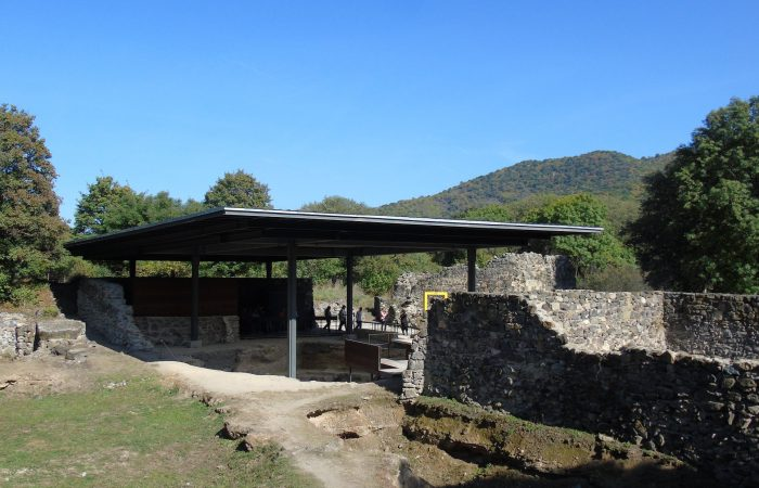 Historical, Dmanisi archaeological expedition